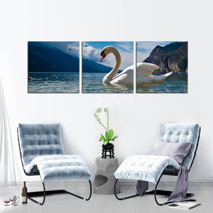 Swan at the Lake Multi Panel Canvas Wall Art - Animals
