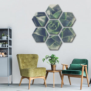 Little Succulent Multi Panel Canvas Wall Art - Botanical