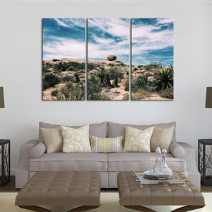 Desert Plants Multi Panel Canvas Wall Art - Botanical