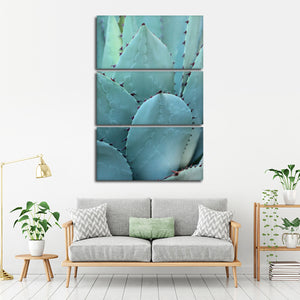 Thorny Agave Multi Panel Canvas Wall Art - Botanical