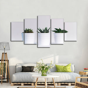 Three Succulents Multi Panel Canvas Wall Art - Botanical