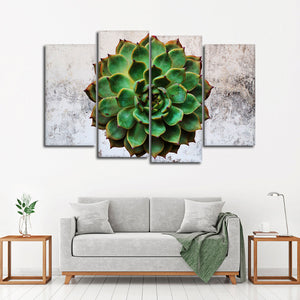 Urban Succulent Multi Panel Canvas Wall Art - Botanical