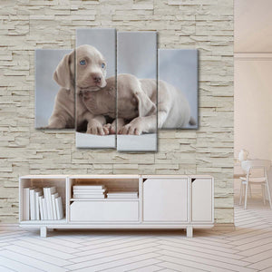 Weimaraner Puppies Multi Panel Canvas Wall Art - Dog