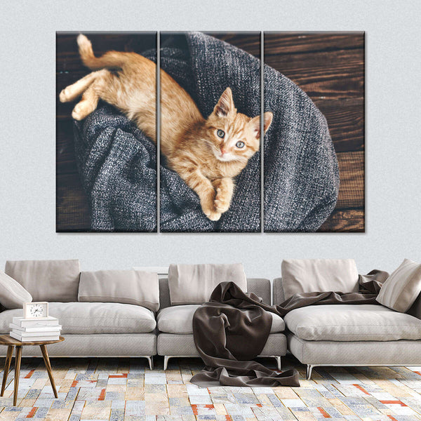 Kitten's Sanctuary Multi Panel Canvas Wall Art
