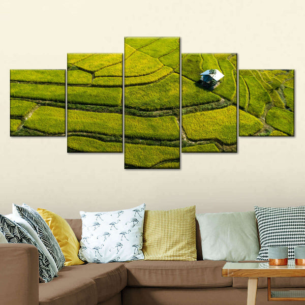 Rice Field Aerial View Multi Panel Canvas Wall Art
