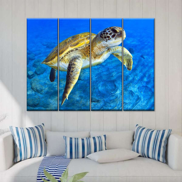 Sea Turtle Canvas Wall Art prints high quality