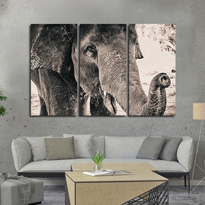 Elephant View Multi Panel Canvas Wall Art - Elephant