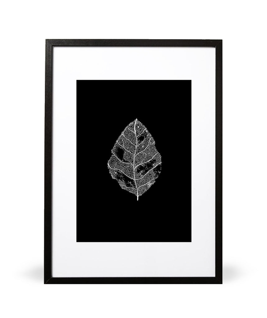 Leaf it Behind Illustrative Print - Intricate Collections