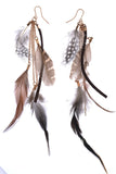 Fierce Feather Earrings