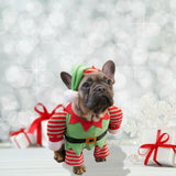 Santa's Little Helper Dog Outfit With Hat, 2 Sizes Available