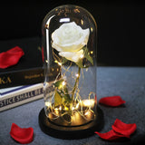 Eternal Mothers Day Rose LED 50% OFF