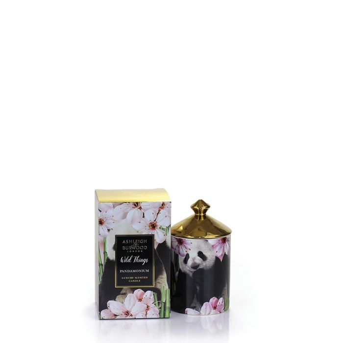 Pandamonium Panda Candle by Ashleigh & Burwood