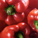 Organic Red Bell Pepper