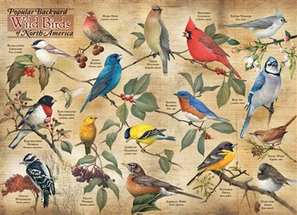 backyard-birds-puzzle