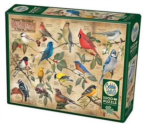 backyard-wild-birds-puzzle-box