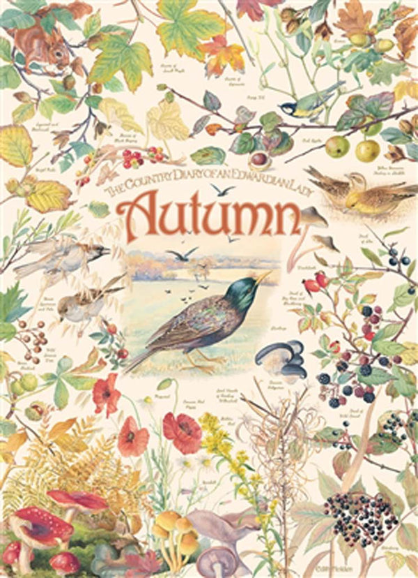 country-diary-autumn-puzzle