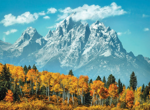 Grand Teton in Fall 500 Piece Jigsaw Puzzle
