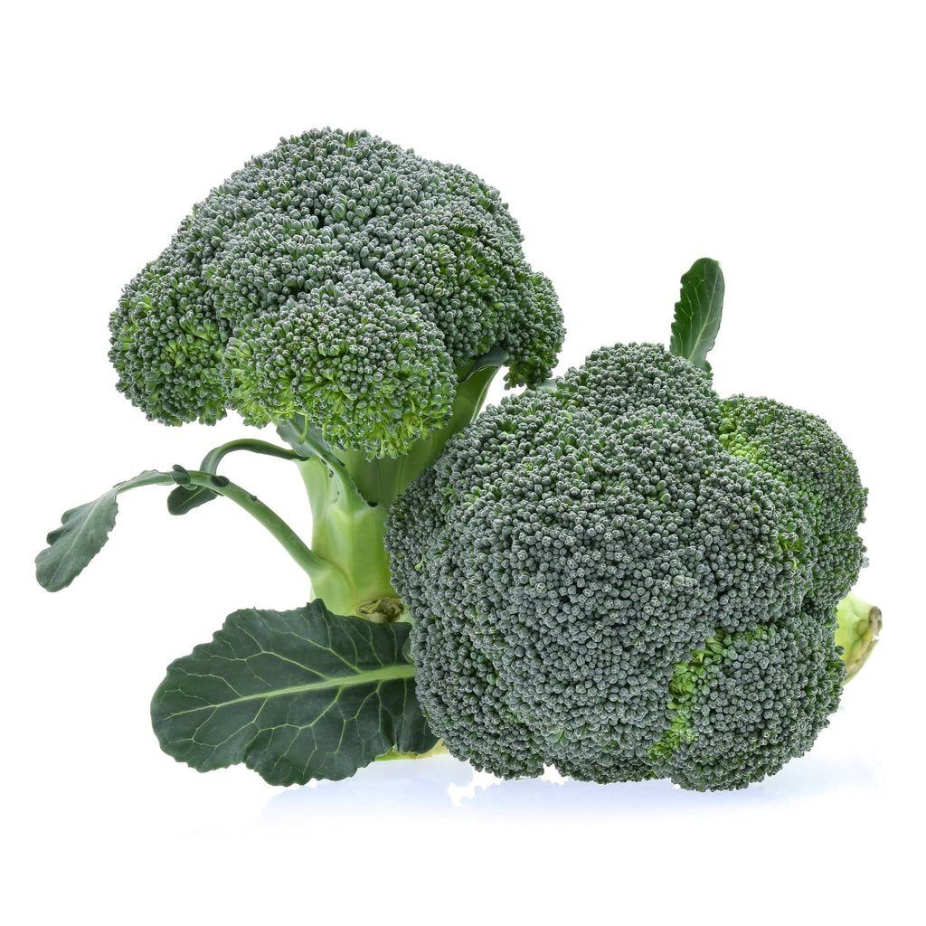 The Amazing Benefits of Broccoli