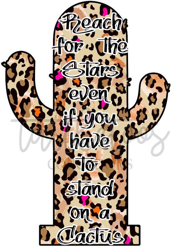 REACH FOR THE STARS CACTUS FS1