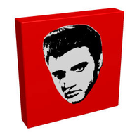 Elvis - Kandibox Canvas Art Prints and Designer Home Interiors
