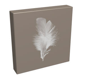 Feather II - Kandibox Canvas Art Prints and Designer Home Interiors