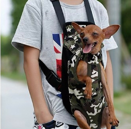 Doggy Back Pack
