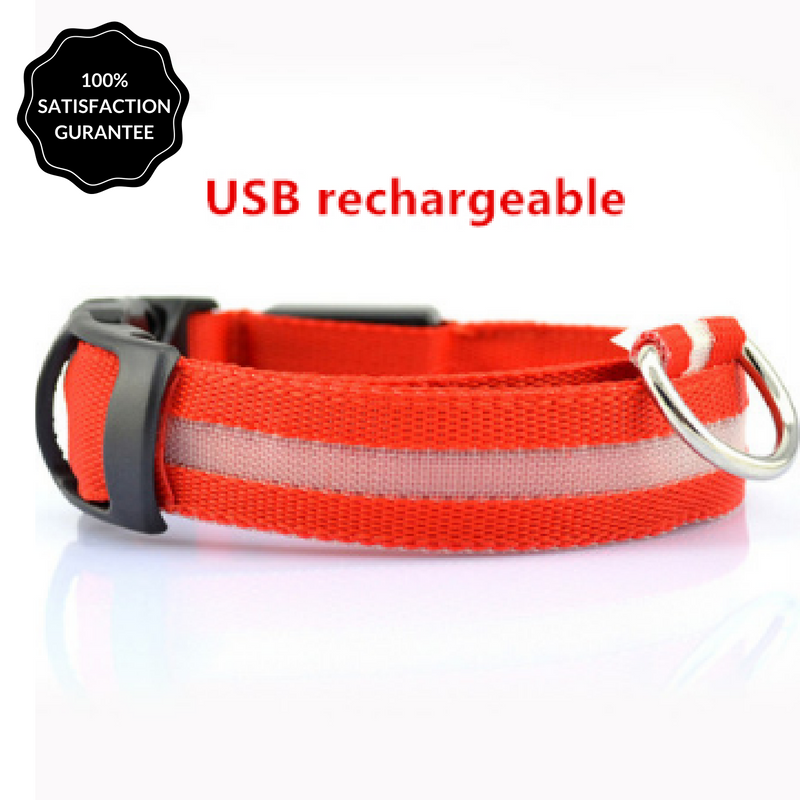 RED Nightime LED Dog Collar With USB Re-Chargeable Batteries-Pet-Natty Pooch