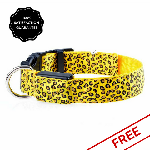 FREE Yellow Snazzy Coloured Pattened LED Dog Safety Collar-Pet-Natty Pooch
