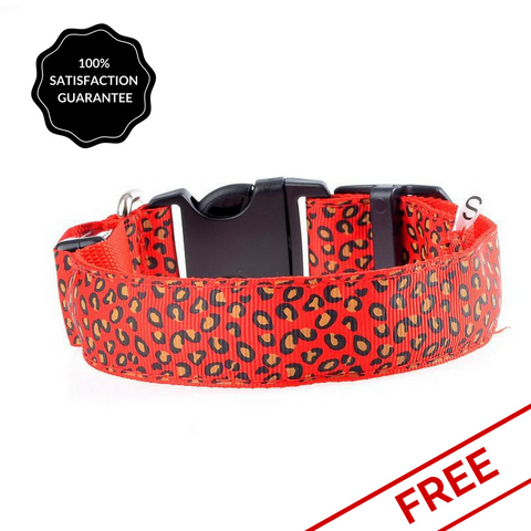 FREE Red Snazzy Coloured LED Dog Safety Collar-Pet-Natty Pooch