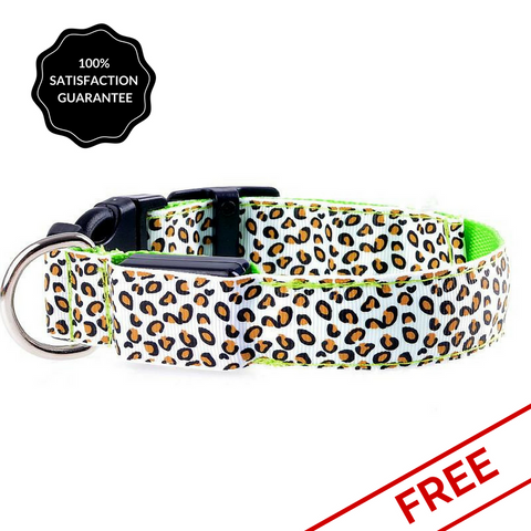 FREE White Snazzy Coloured Pattened LED Dog Safety Collar-Pet-Natty Pooch