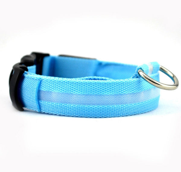 Blue Nightime LED Dog Collar With USB Re-Chargeable Batteries-Pet-Natty Pooch
