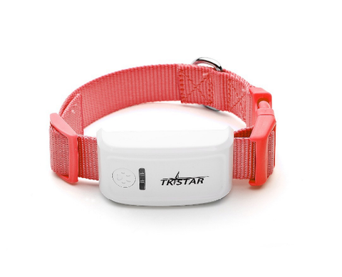 Red GPS dog collar with real time tracking