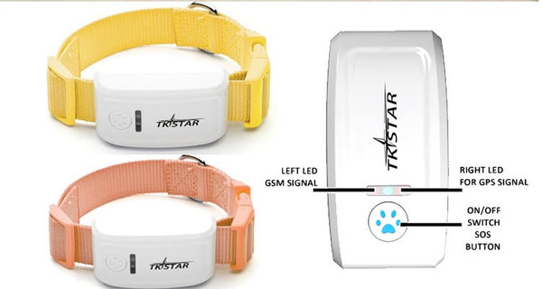 Real Time Multi Coloured Dog GPS Tracking System-Jewellery-Natty Pooch