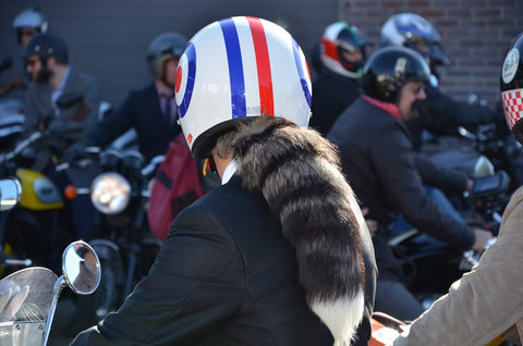 scooter rider with racoon tail from helmet at gentlemans ride manchester