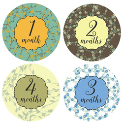 Frames Baby Girl Monthly Stickers