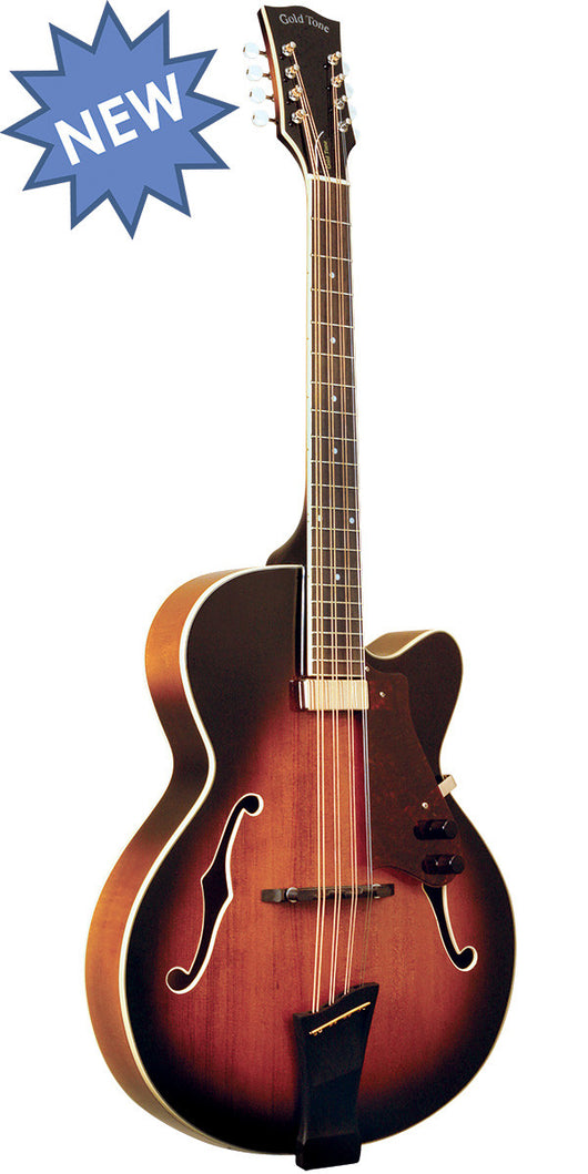Gold Tone Mandocello with pickup