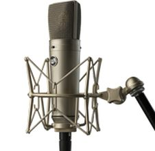 Warmm Audio WA 87 Microphone