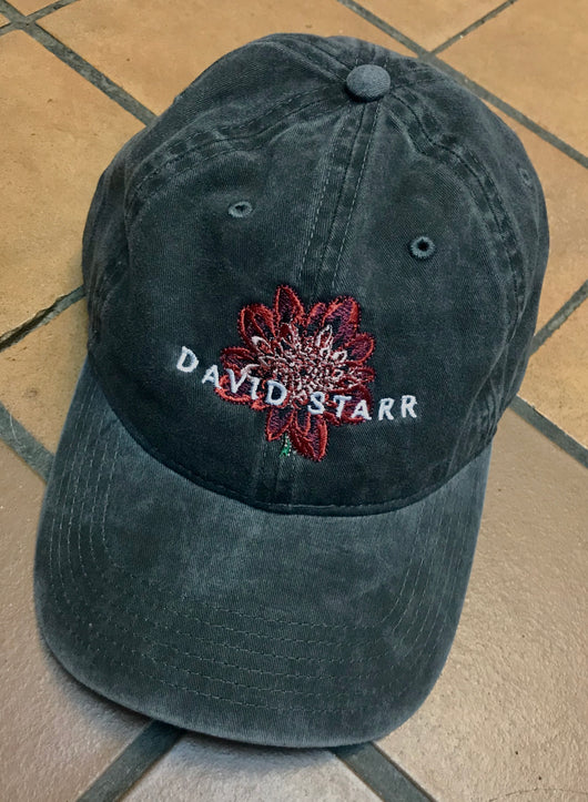 "David Starr ""Beauty And Ruin"" Logo Cap"