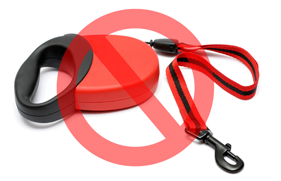 4 Reasons Why You Should NOT Use a Retractable Dog Leash