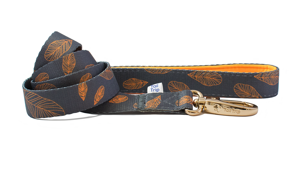 Tail Trip Autumn Design Dog Leash
