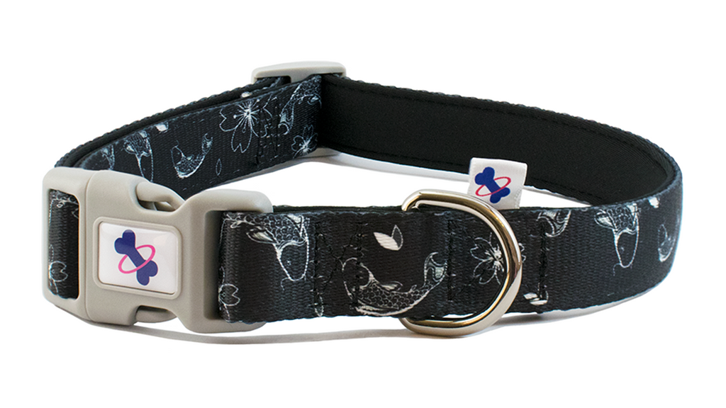KOI | Dog Collar