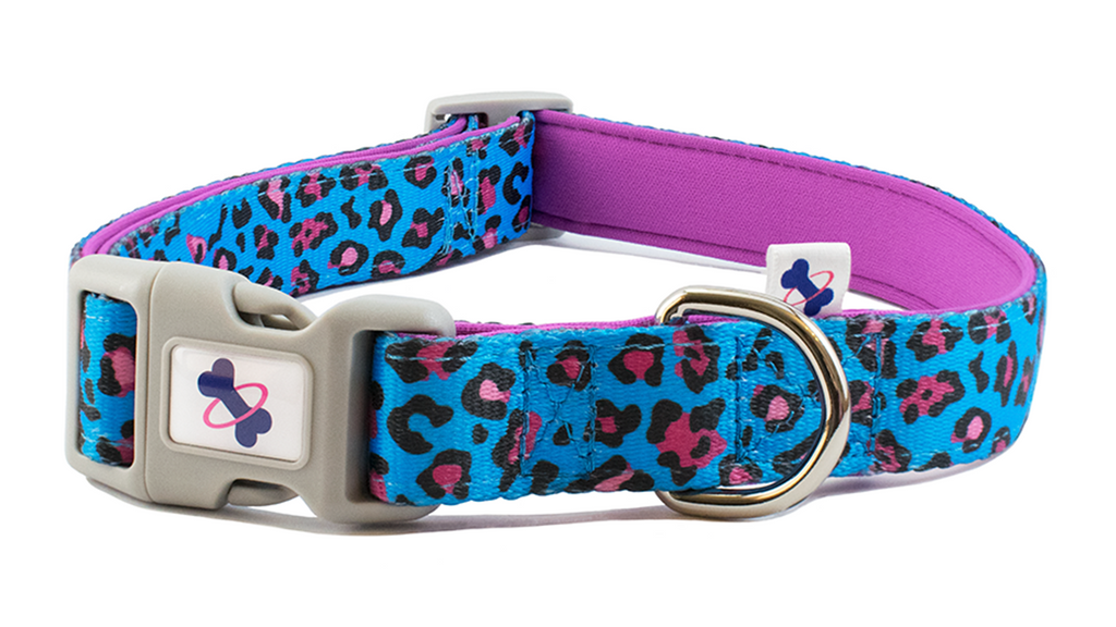 PARTY ANIMAL | Dog Collar