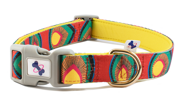 Tail Trip Dog Collar Paprika Design