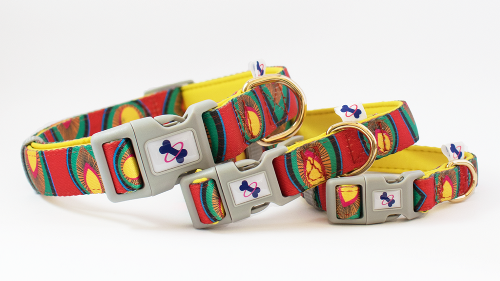 PAPRIKA | Dog Collar