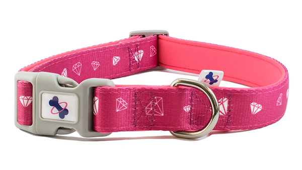 Tail Trip Dog Collar Party Animal Design
