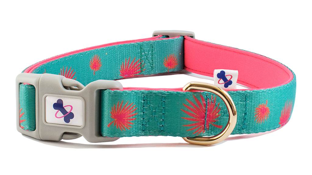 TROPICO | Dog Collar