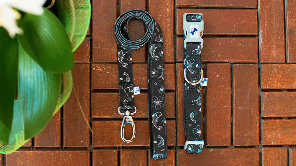 Tail Trip Dog Collar and leash set Koi Design
