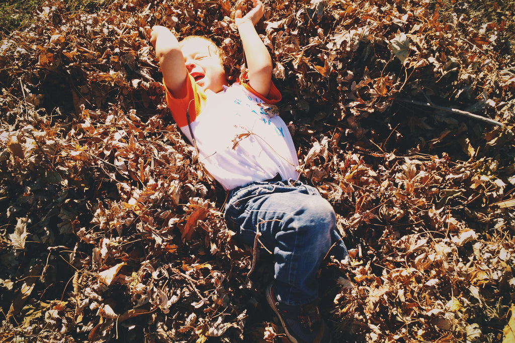 Young boy playing in fall leaves