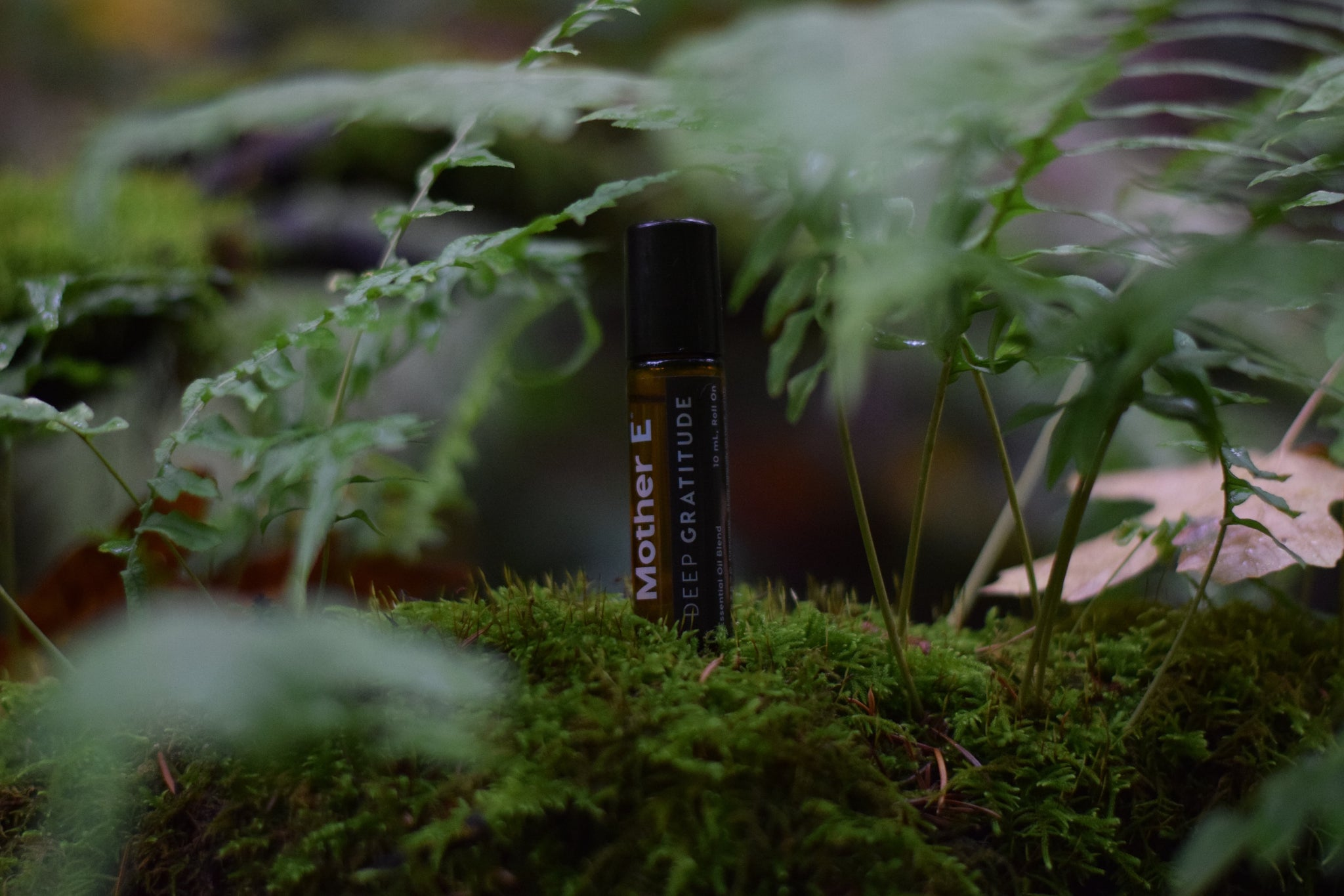 Mother E Deep Gratitude Essential Oil Blend roll on bottle in the forest with ferns
