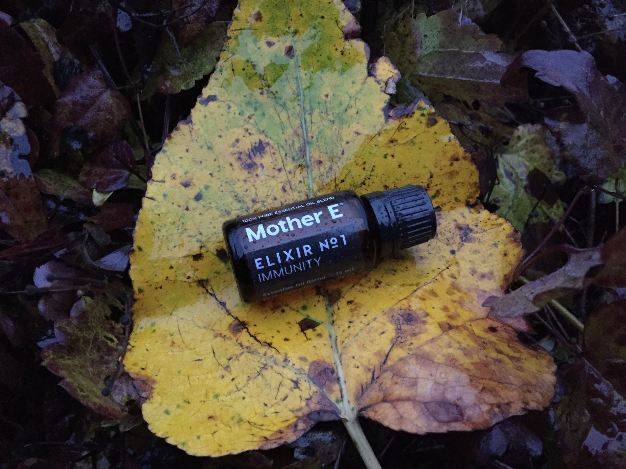 Elixir No 1 Immunity Essential Oil bottle on a yellow leaf on top of a pile of leaves